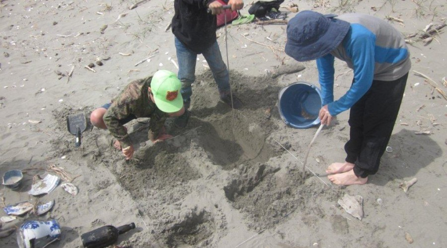 Digging up the past in Kapiti