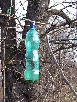 recycled bottle feeder
