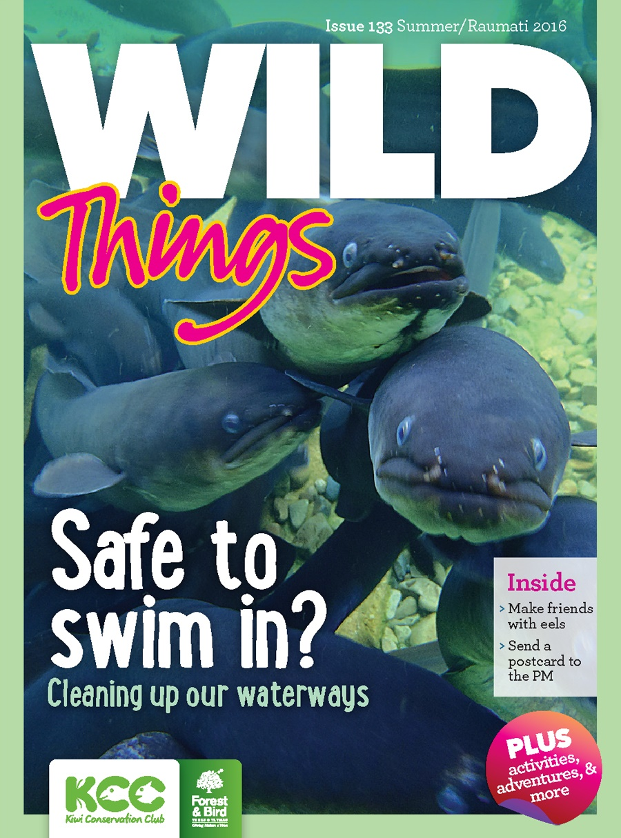 kcc_wildthings_133_summer-2016_cover-l