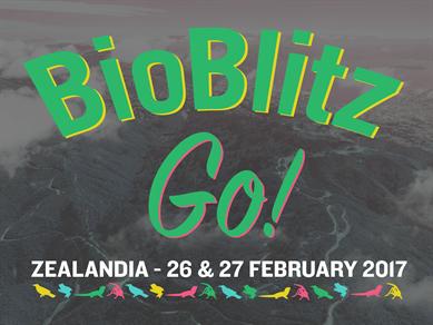 BioBlitz Go @ ZEALANDIA - Wellington