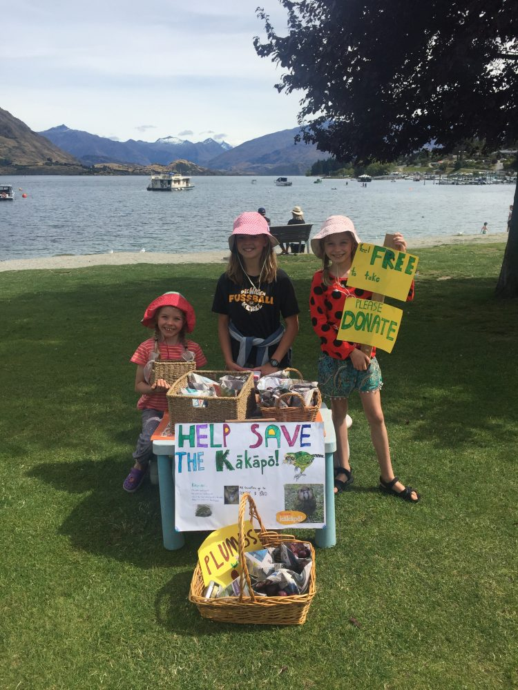 Our Help Save the Kākāpō stall, Photograph by Pettit Family © Pettit Family