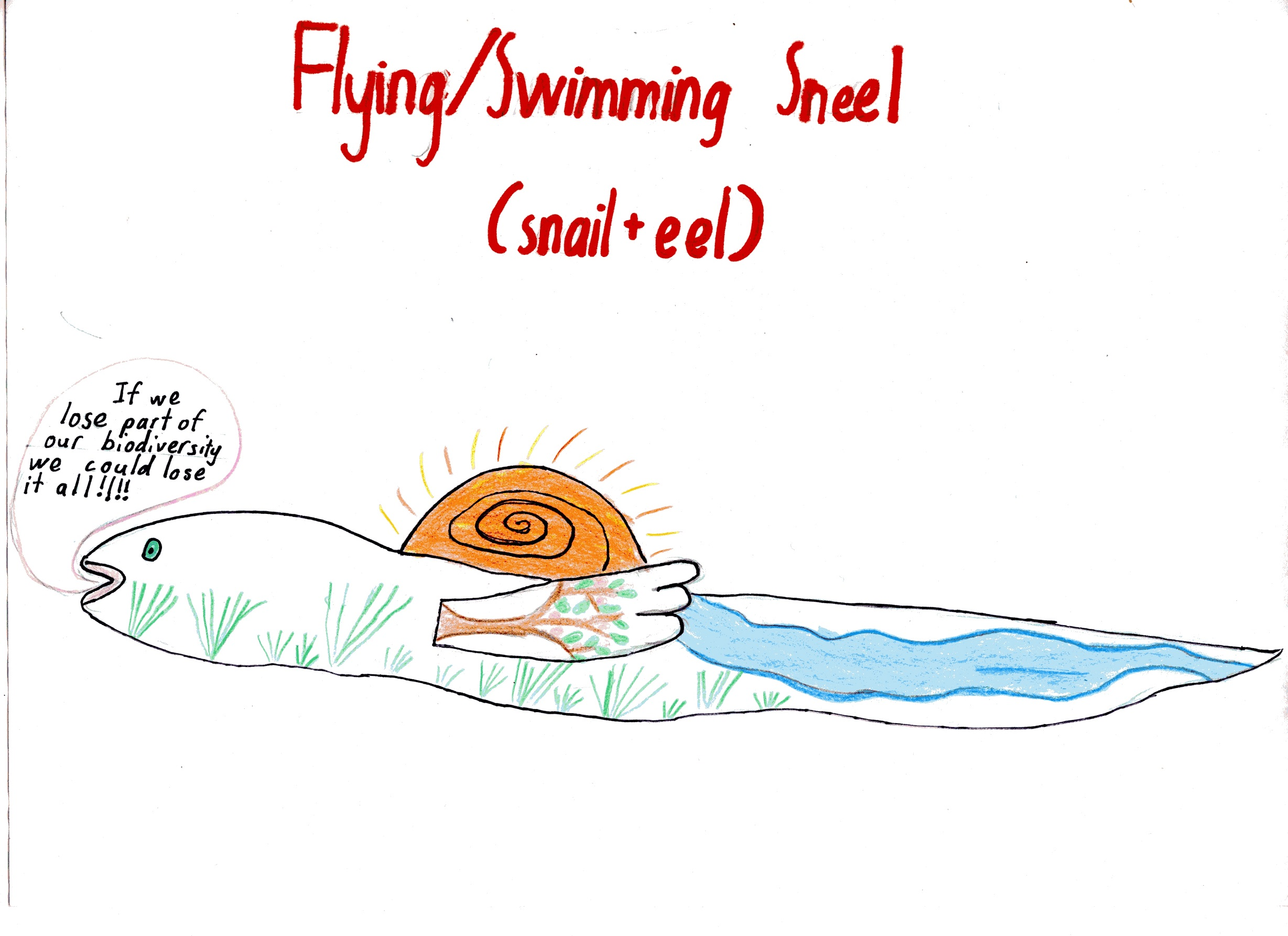 The Flying/Swimming Sneel by Annika (age 10)