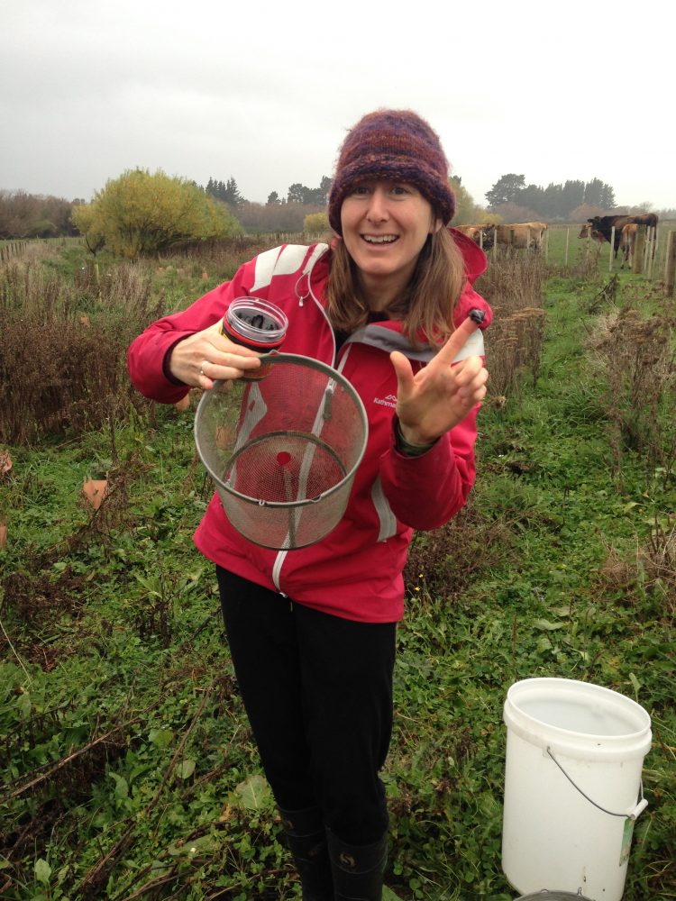 Sophie from Working Waters Trust baiting the traps with marmite the day before.