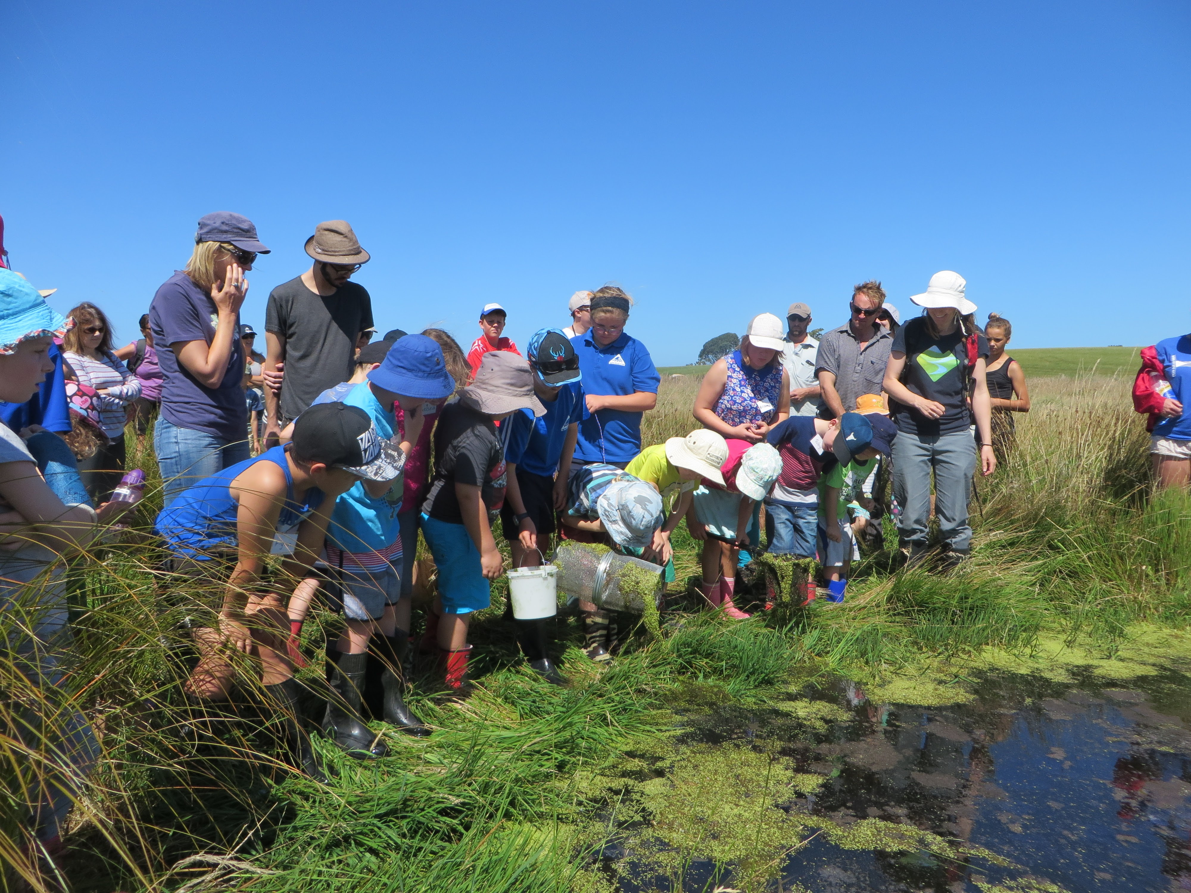 Mudfish Experience with Working Waters Trust