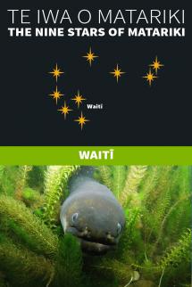 Matariki - 1