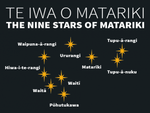 Matariki Graphic - With Title (1)
