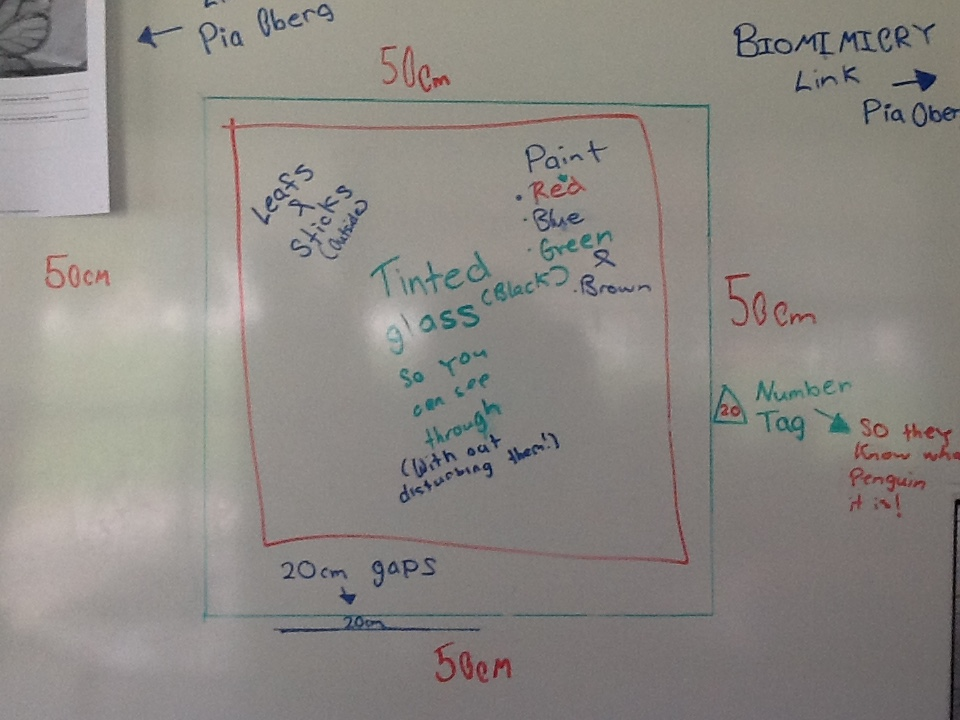 Brooke and Emily's design with tinted glass to limit disturbance.