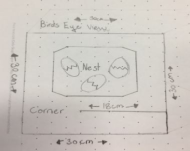 Egg cam idea by Sophie and Ana