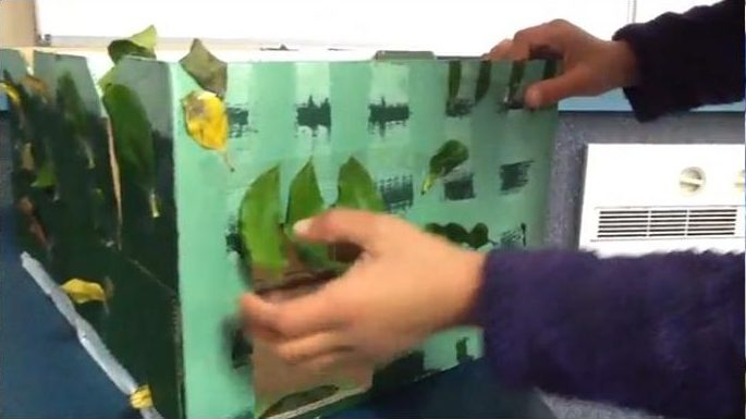 Amy and Angela designed a box that would be painted green and covered in leaves found in the environment.
