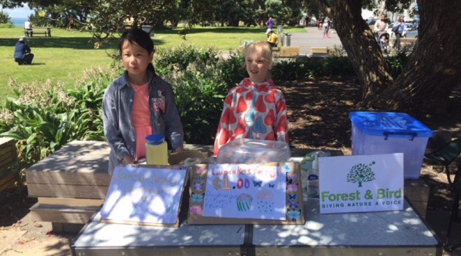Fundraising at Brown's Bay