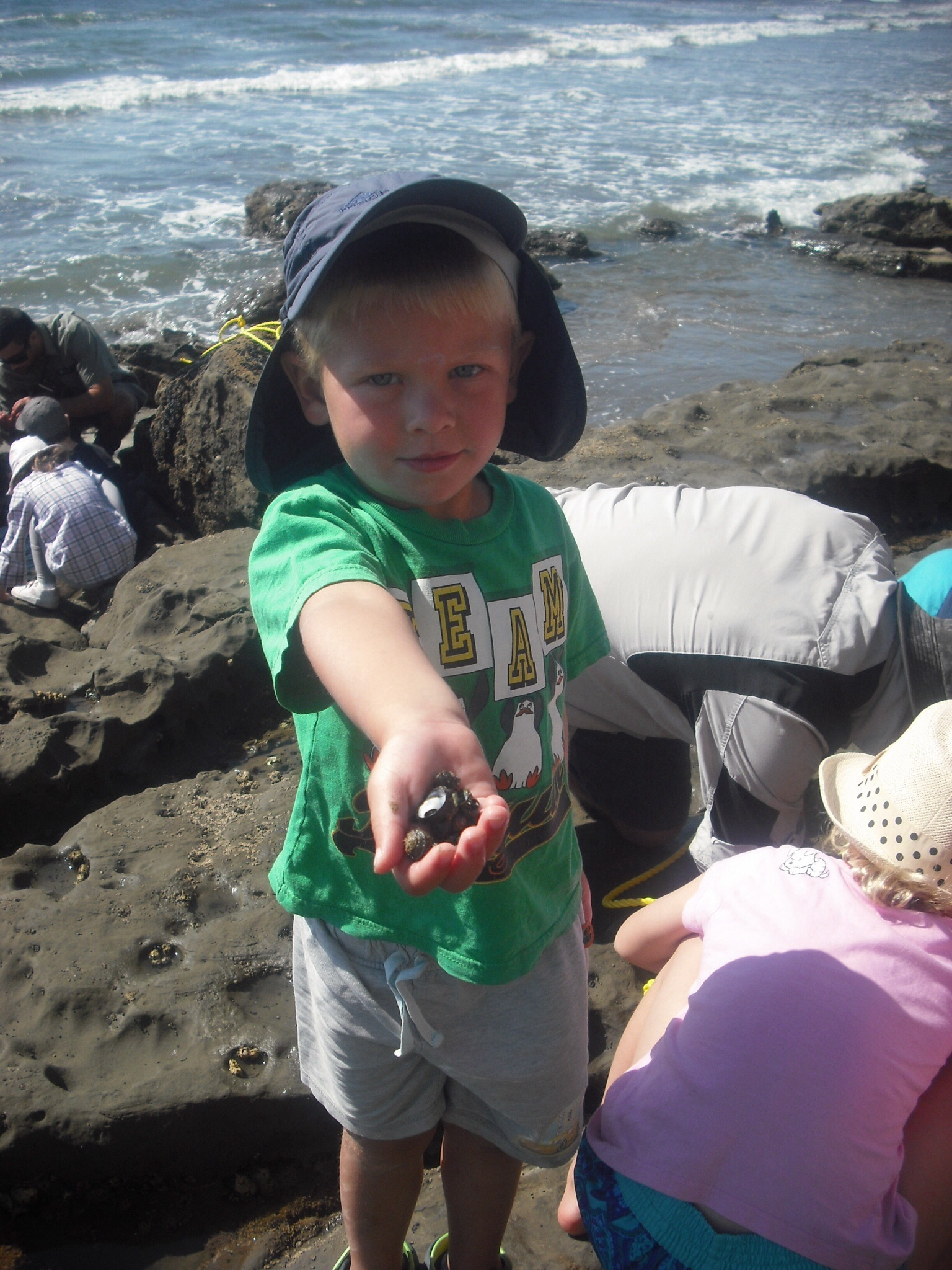 Exploring the rocky shore at Ahuriri