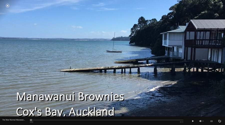 Manawanui Brownies' New Normal Project