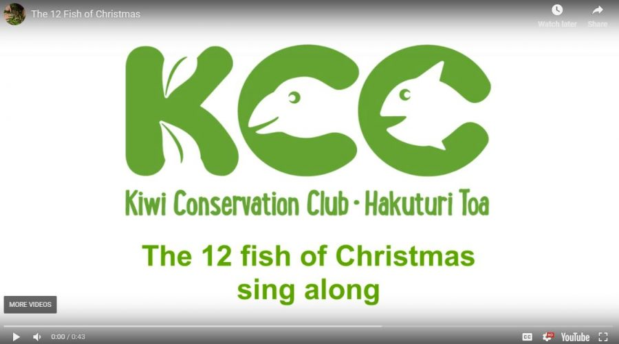 VIDEO: The 12 Fish of Christmas