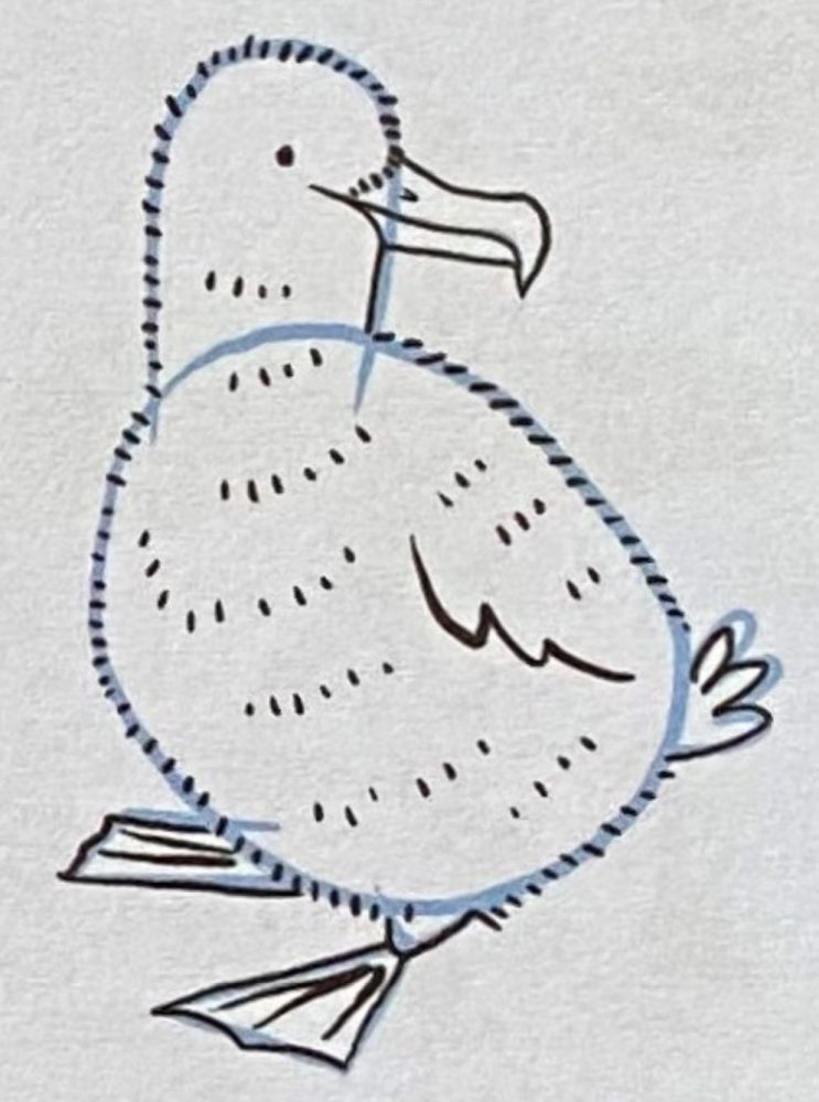 Draw an albatross chick with Giselle Clarkson