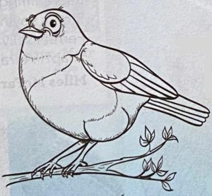 Draw a mōhua with Anton Van Helden
