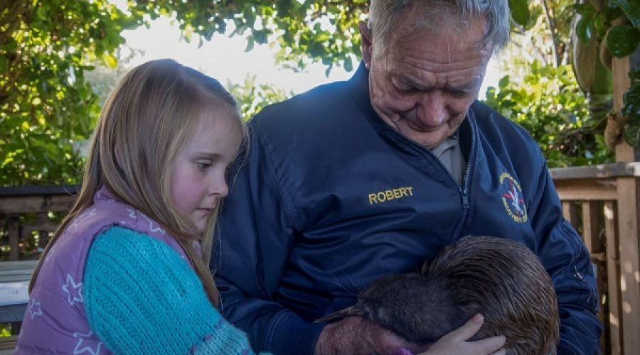 Northland Native Bird Recovery Centre: Helping Our Native Birds