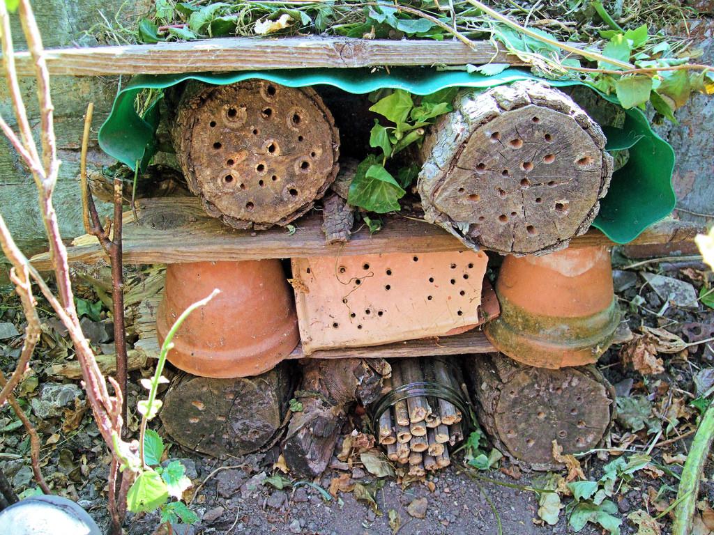 Make your own bug hotel - Dunedin - 14 February 2021